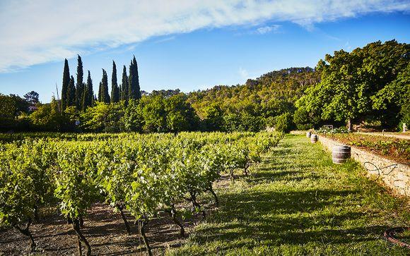 Rendez-vous... à La Celle en Provence