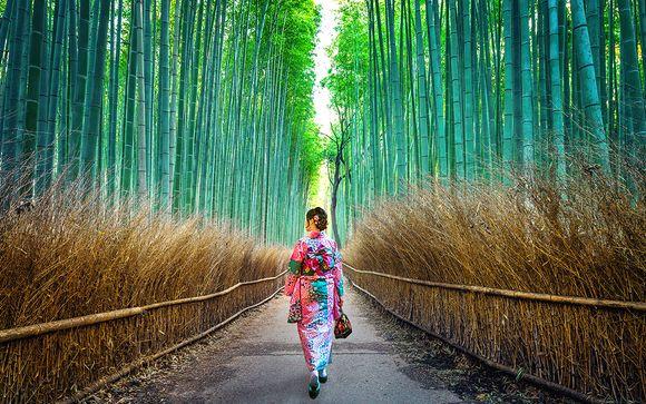 Circuit Incontournables et bien-être au Japon