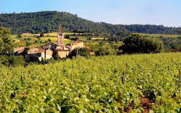 Rendez-vous... dans le Languedoc-Roussillon