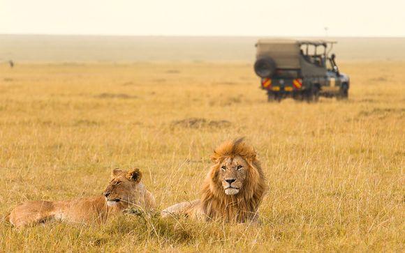 Circuit découverte du Kenya et séjour balnéaire