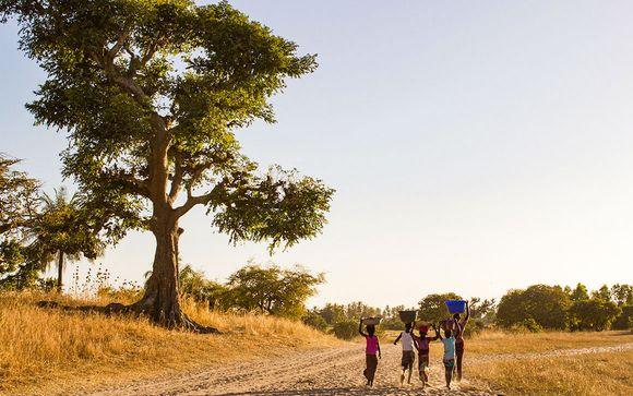 Rencontres magiques, safari et farniente