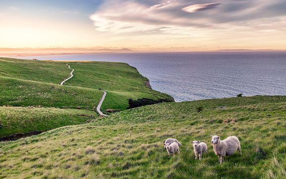Votre pré-extension en Nouvelle-Zélande (offre 2)