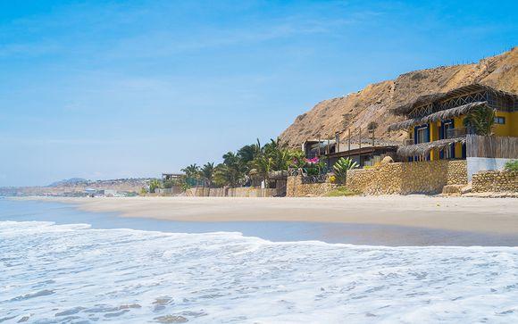 Offre 2 : Zoom sur votre programme avec extension Northern Beach
