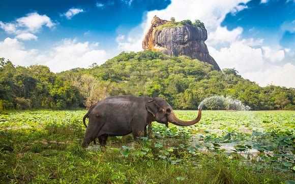 Circuit Sri Lanka et extension à Wadduwa avec Emirates