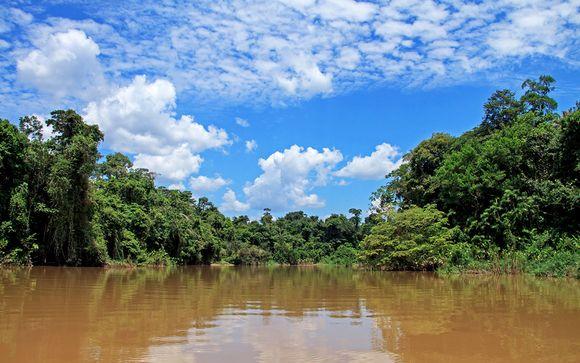 Rendez-vous... en Amazonie