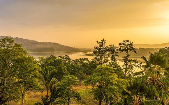 Circuit Privatif Panama : entre ville, découverte et séjour balnéaire