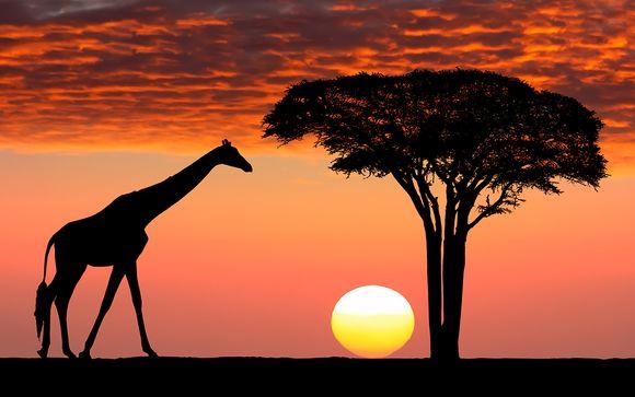 Pur Safari Afrique du Sud et extension possible à l'Île Maurice
