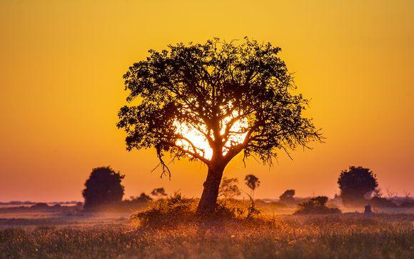 Circuit Botswana et Chutes Victoria en 11 jours et 8 nuits