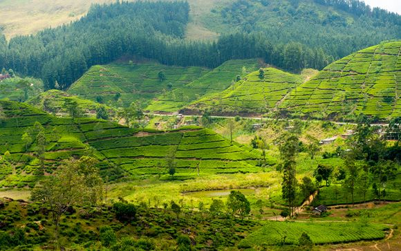 Sri Lanka - L'itinerario del tour