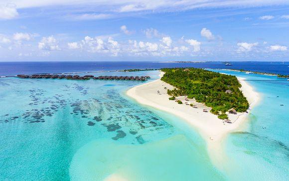 Tour privato dello Sri Lanka e soggiorno mare alle Maldive ...