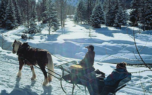 Divertente escursione in slitta nel Parco del Gran Paradiso