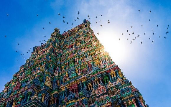 India del Sud, alla scoperta di templi, natura e backwaters