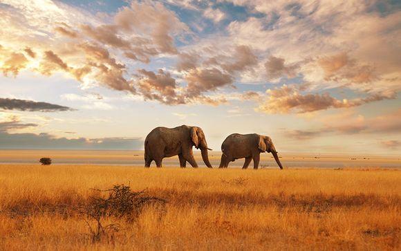 Top 10 siti di incontri sudafricani