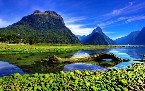 Tour della Nuova Zelanda con noleggio auto incluso