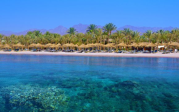 Fayrouz Resort Sharm El Sheikh 4*S