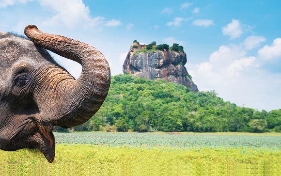 Alla scoperta dello Sri Lanka in tour di 8 o 10 notti