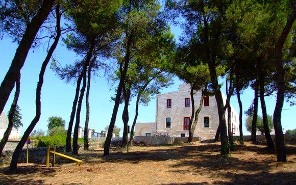 Alla scoperta di Alberobello