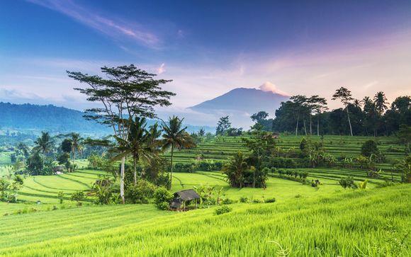 Alla scoperta di Ubud, Parco nazionale Bali Barat e Canggu