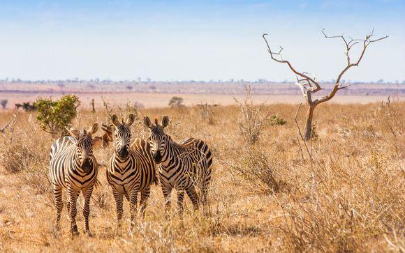 Itinerario di 3 notti - Safari a Tsavo Est / Amboseli / Saltlick