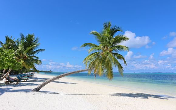 Ville sulla spiaggia in moderno resort 4*