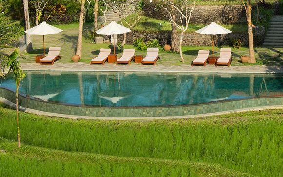 Estensione a Ubud - Alaya Resort Ubud 5*