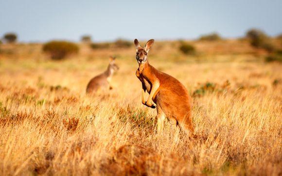 Tour alla scoperta dell'Australia da Sydney a Perth