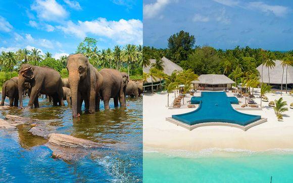 Mini Tour in Sri Lanka + Kihaa Maldives Resort & Spa 5*