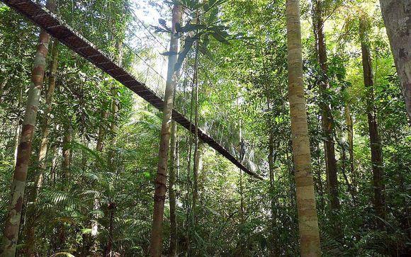 Tour Taman Negara - con ranger privato nel parco