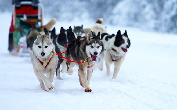 Welkom in...Lapland