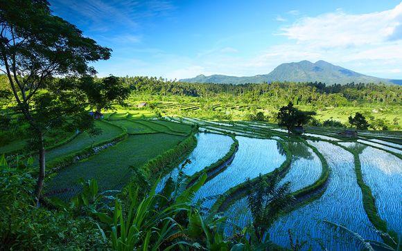 Welkom op Bali