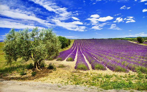 Welkom in... Baux-de-Provence