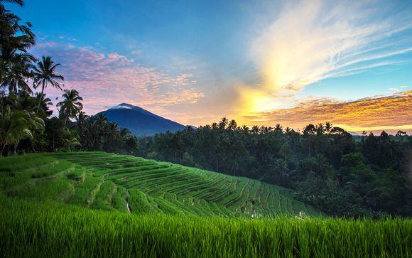 Welkom op ... Bali