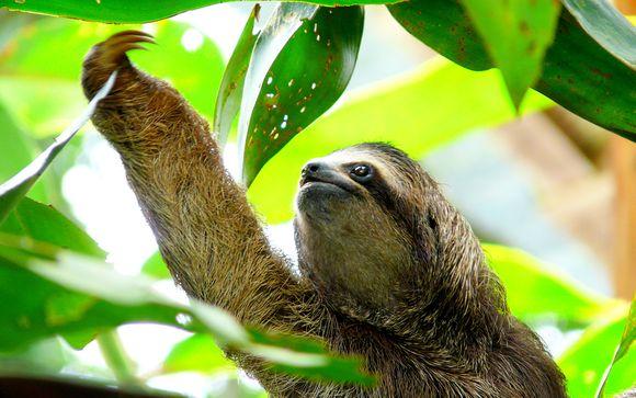 Welkom in ... Costa Rica en Nicaragua!