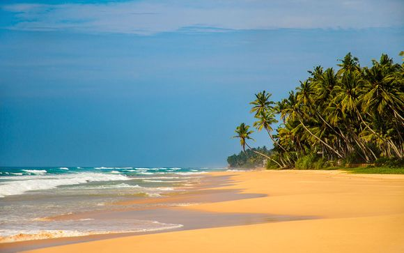 Destination...Sri Lanka
