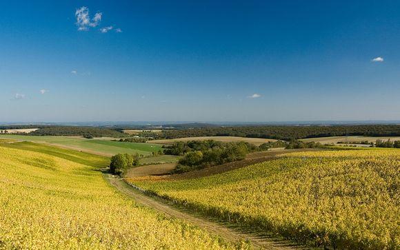 Destination...Loire Valley