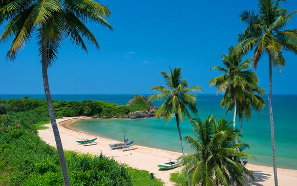 Private Sri Lanka Tour & Shinagawa Beach Hotel 5*