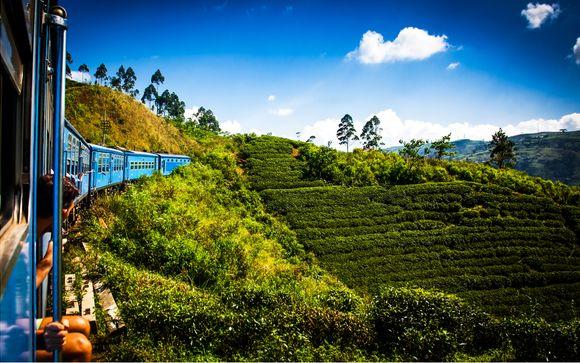 Private Sri Lanka Tour