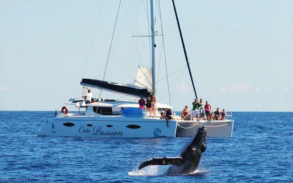 Sortie Catamaran Cata'Passion - 3h00