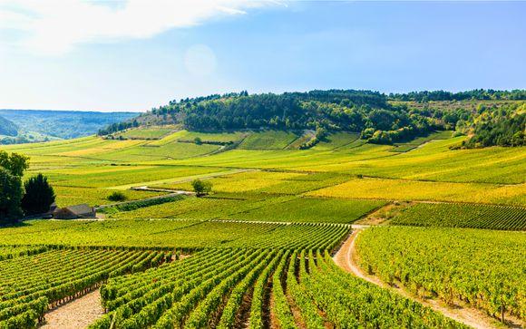 Degustazione e spa nella prestigiosa strada dei vini borgognoni