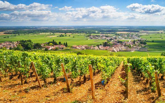 Vino e relax tra le vigne più rinomate al mondo
