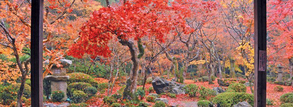 Offerte last minute per Kyoto